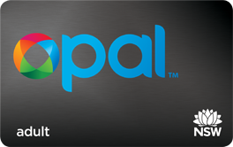 Opal_card_adult_large